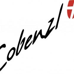 Logo Weingut Cobenzl